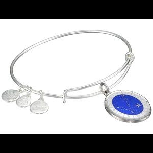 Retired Silver Alex and Ani Pisces Bracelet